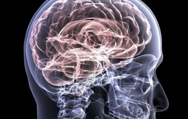 Epilepsia e Emprego